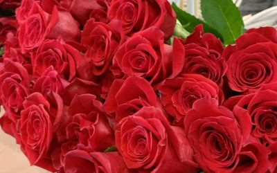Svečani prijam prigodom Valentinova