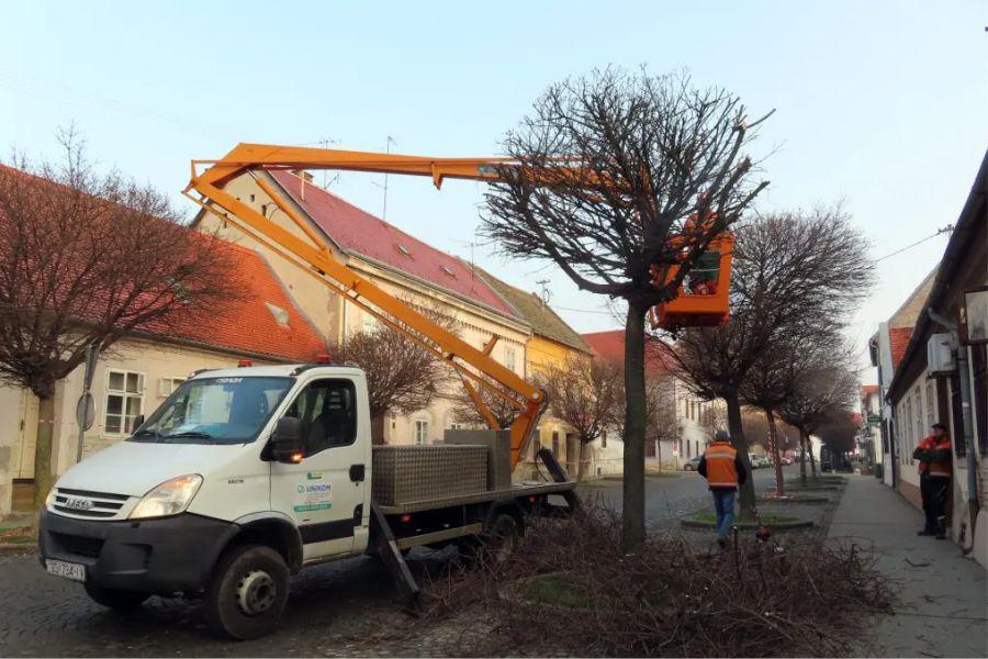 Očuvanje stabala u Tvrđi prilikom izvođenja radova na rekonstrukciji i dogradnji komunalne infrastrukture Tvrđe