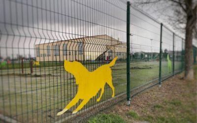 [ANKETA] Treba li u našem gradu više parkova za pse?
