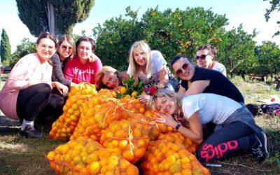 Znaš li priču o Putujućim lubenicama i mandarinama iz zlatne doline?